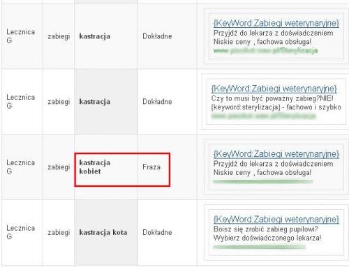 wykorzystanie raportu skuteczności wyszukiwane hasła google adwords