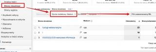 sitelinki-analytics-strony-docelowe